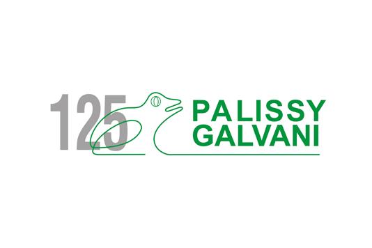 Palissy Galvani